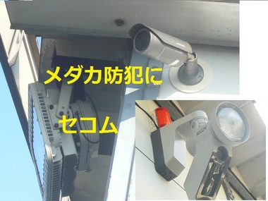P1130018.JPG
